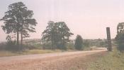 Въезд в город, слева сосны